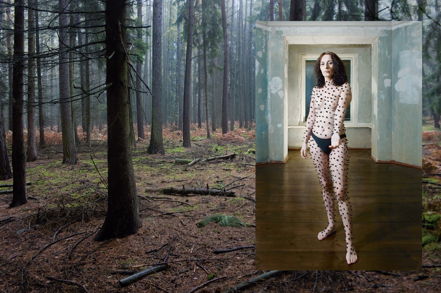 forest, woman, naked, thorns, need, longing, desire, hunt, photobook